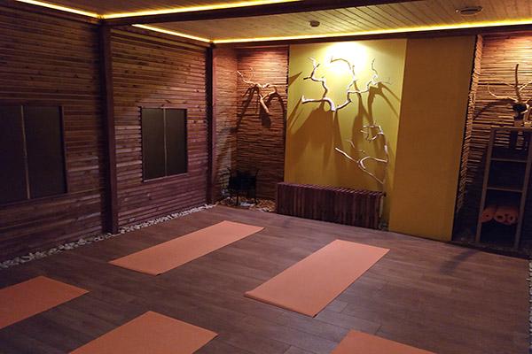 Журнал йога лайф минск